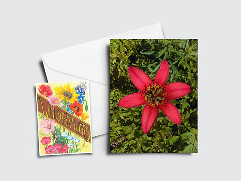 Tiger Lily Flower Card
