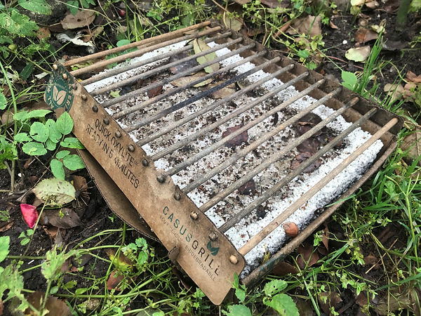 Biodegradable 4.jpg