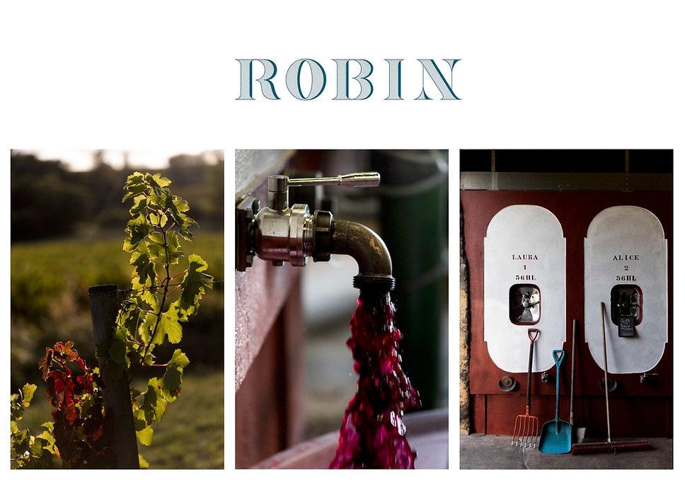 ROBIN Site Image1.jpg