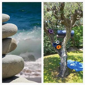 20190621_121643.jpggalet et vagues, olivier avectapis de yog dans les branches