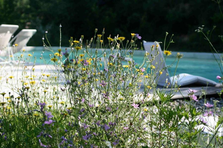 piscine, chaise longues nature au Monastère de Ségriès