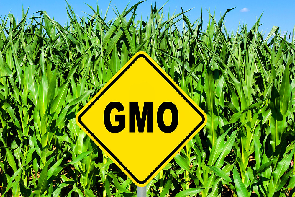 National GMO Labeling Bill Passes Congress … What Will it Really Mean to You