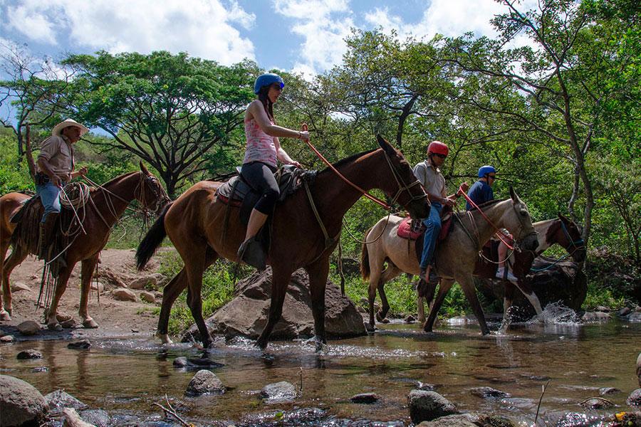 BORINQUEN HORSEBACK RIDE