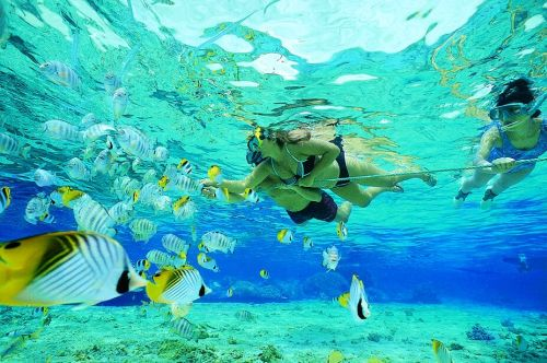 snorkeling-costa-rica