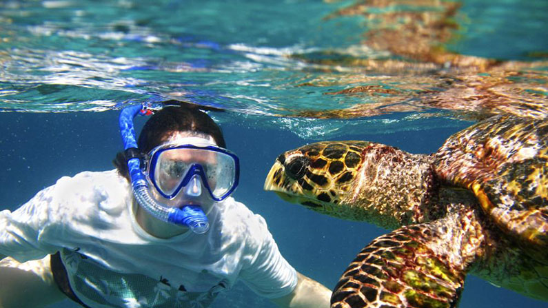 costa-rica-snorkeling-795