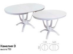 столы-Камелия,-Лилия,-Рим1123_08.jpg