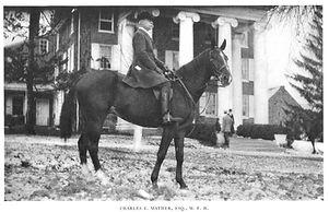 CharlesEMatheron horse (1).jpg