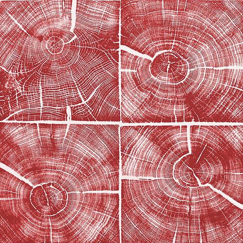 """Quatre Carré de Chêne (Rouge) - 23 1/2 x 23 1/2"""" inches"""
