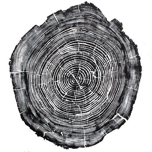 "Digital Fine Art Cedar Wood Print 24"" x 24"" inches"
