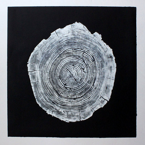 Cedar Wood Print 43 x 43 inches White ink on black paper (Unframed)