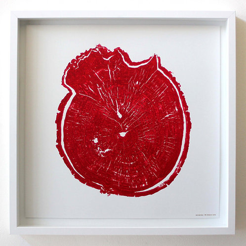 Burl Wood Print 18 x 18  inches Red Ink (Unframed)