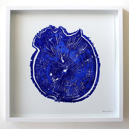 Burl Wood Print 18 x 18 inches Blue ink (Unframed)