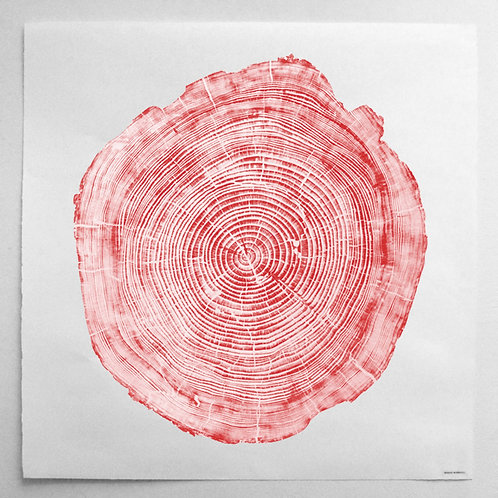 Cedar Wood Print 47 x 47 inches- Red Ink (Framed)