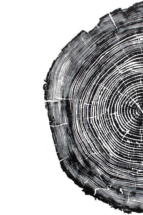 "Cedar Wood Print Half - 27"" x 43"" inches"