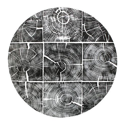 """Cercle de Carré de Chêne - 40"""" x 40"""" inches"""