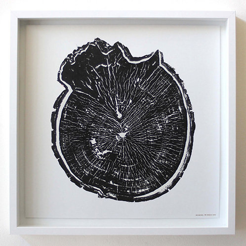 Burl Wood Print 18 x 18 inches Black Ink (Unframed)