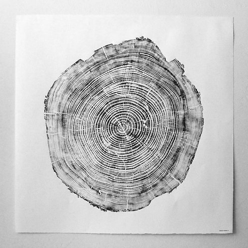 Cedar Wood Print 43 x 43 inches - Black Ink (unframed)