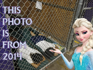 The Lady Who Voices Elsa Doesn't Know 'Who Built the Cages'