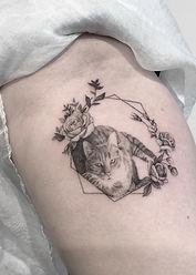 cat_erna_2.jpg