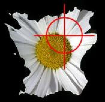 NSKG Logo.jpg