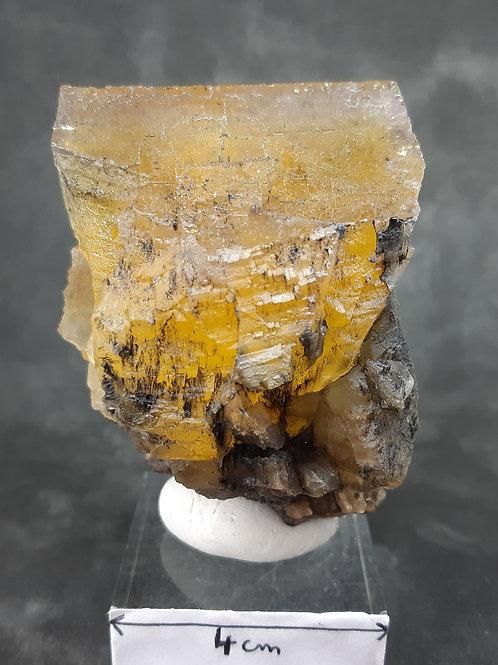 Fluorine jaune        USA