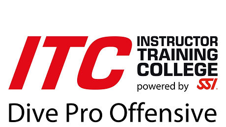 ITC Pro Offensive