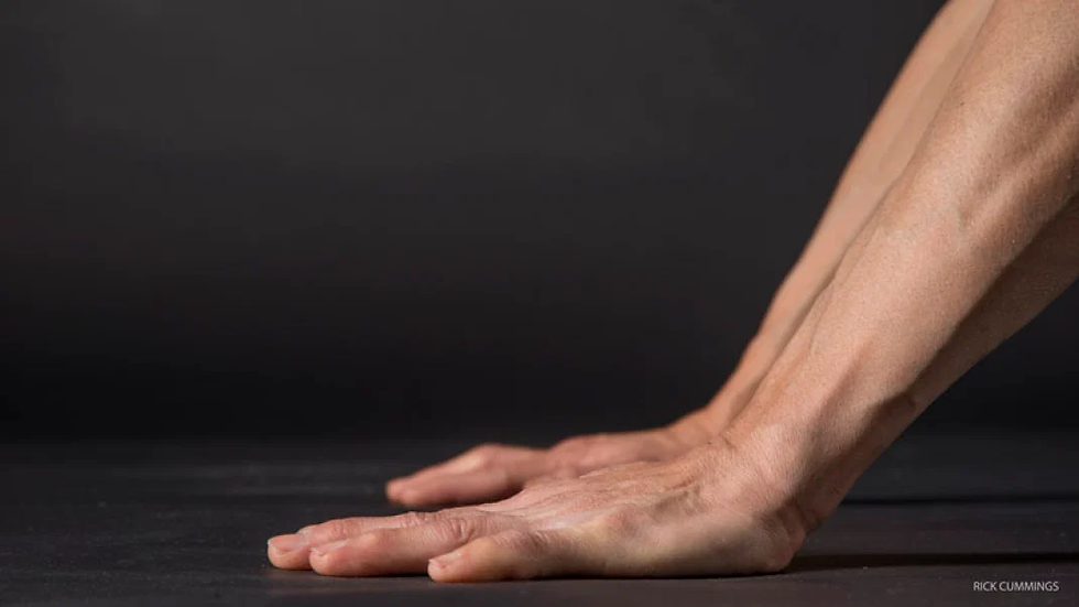 ray-long-olivia-hsu-anatomy-wrists-slide