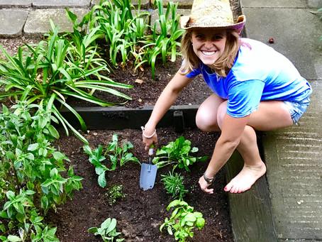 Joy & Gardening