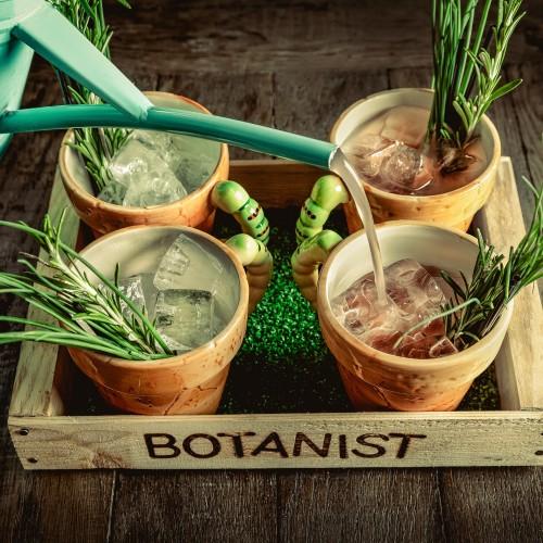 Botanical Experience