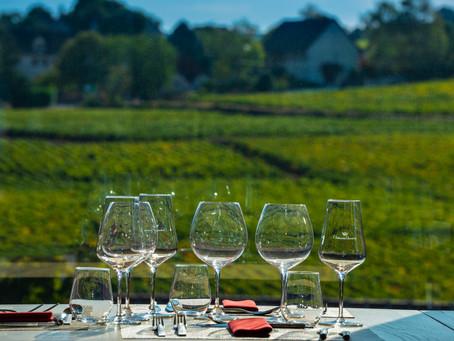 Photography and Biking in Burgundy
