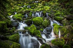 Sol Duc River, Olympic National Park, Washington