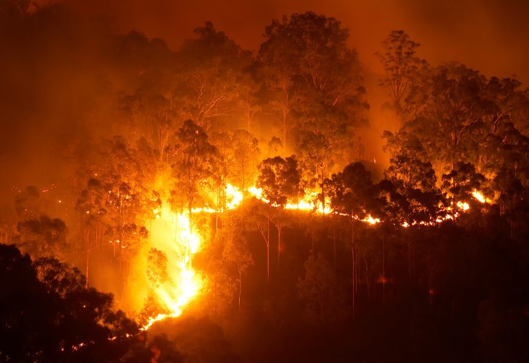 Bushfire risk facing our community