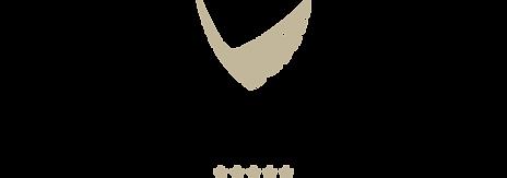 VNGP_logotipas_spalvotas_pilnas_LT.png