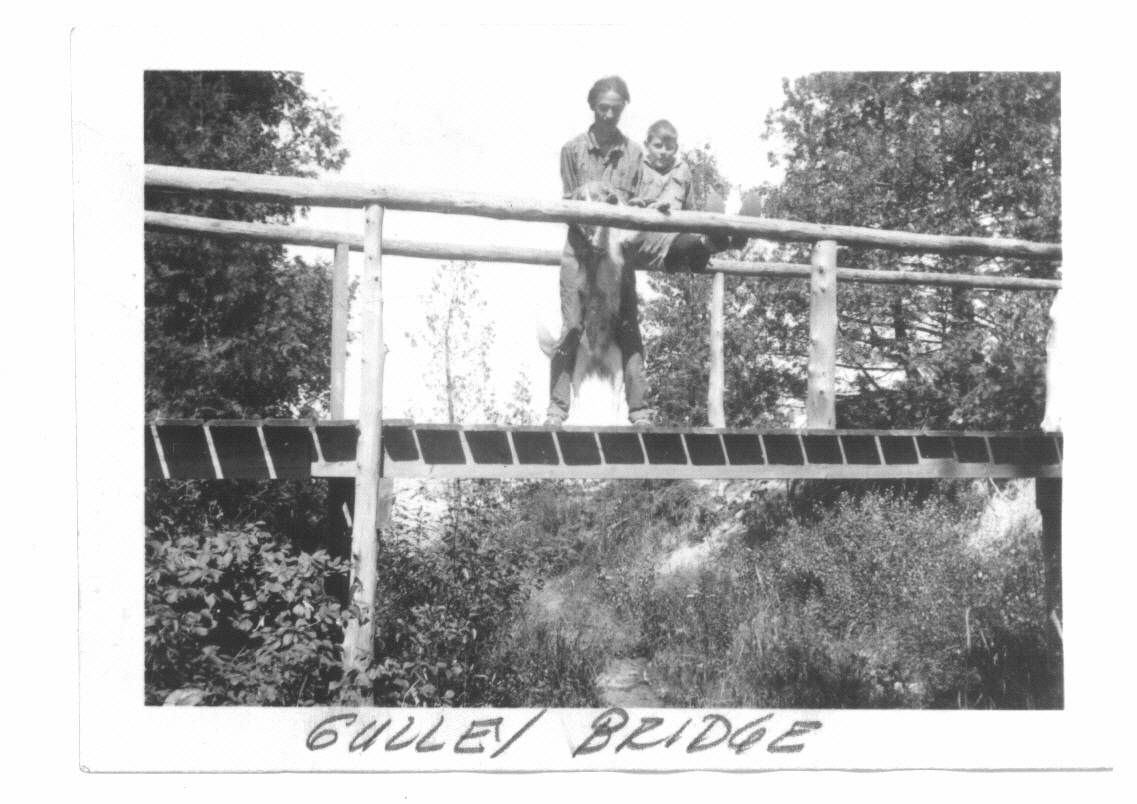 Gulley Bridge.jpg