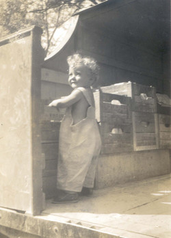 Barbara Ross in milk truck.jpg