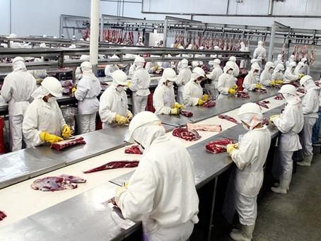 Quase 400 empregados são infectados com coronavírus em frigorífico nos EUA.