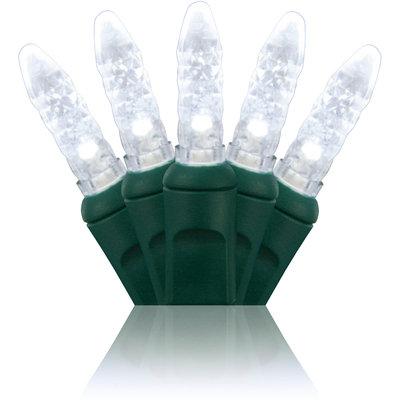 Cool White M5 LED Mini Lights 24'