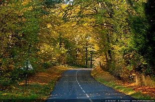 automne-haute_vallee_de_chevreuse-02.jpg