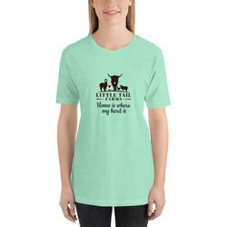 unisex-premium-t-shirt-heather-mint-fron
