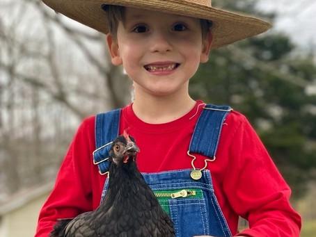 Farmer Gilbert