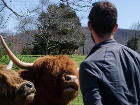 Spring on the Farm means Farm Tours!!