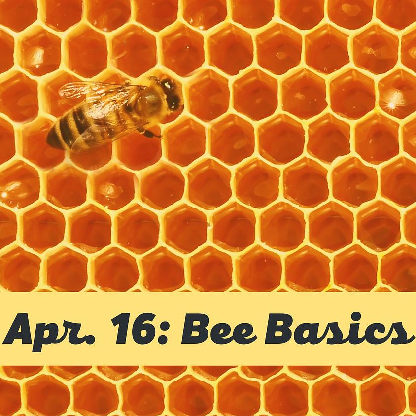 Bee Basics Ag & Stewardship Workshop