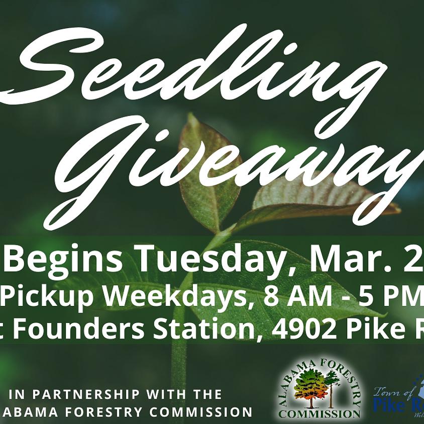 Seedling Giveaway
