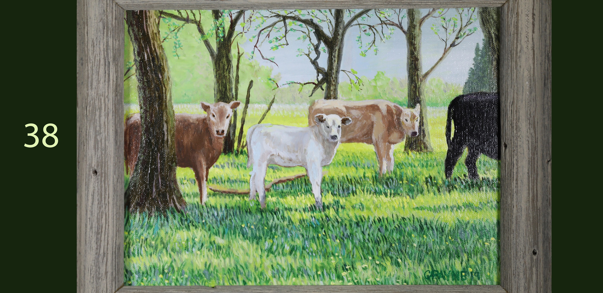 Wallahatchie Cows