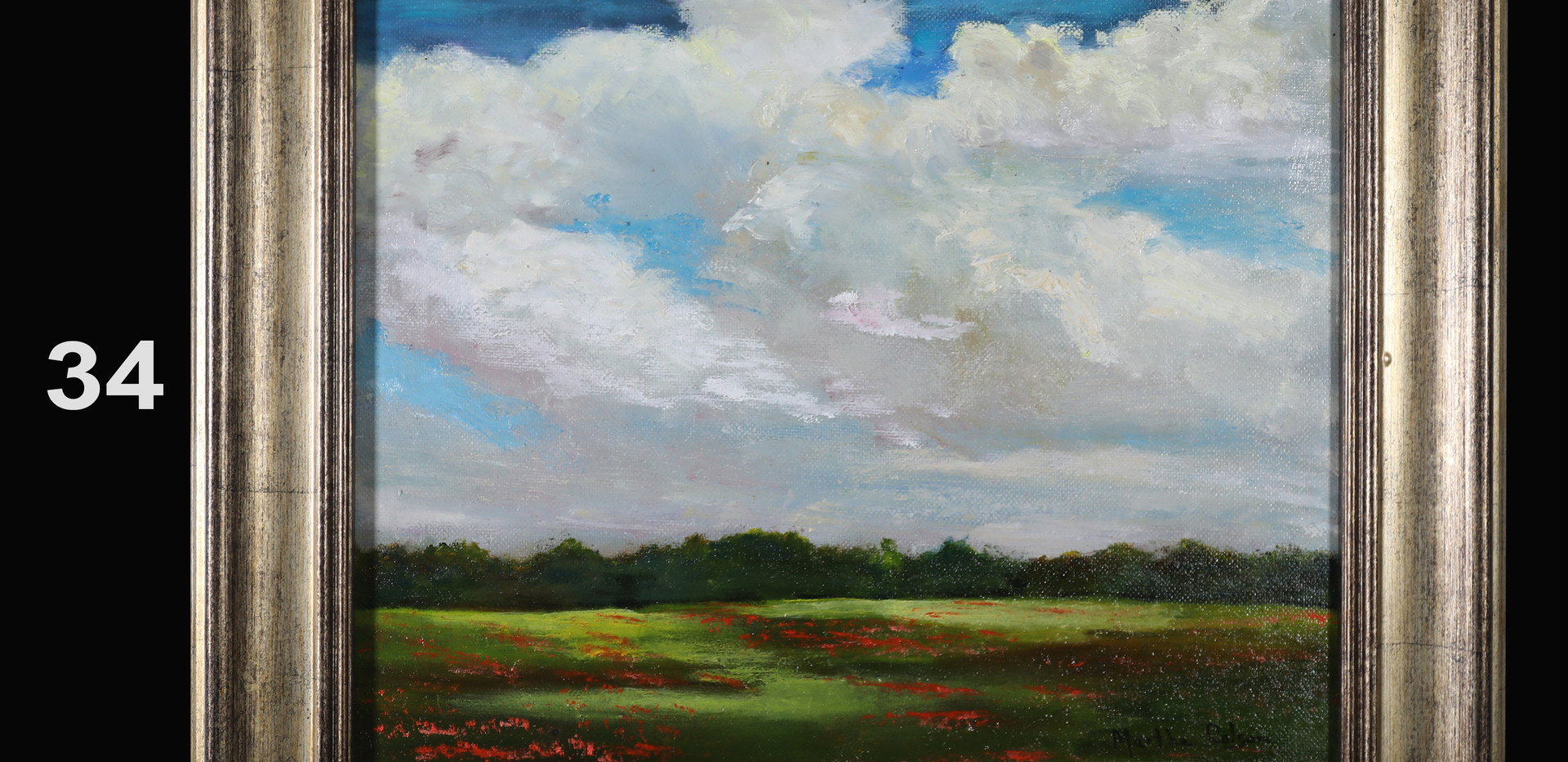 34. Wide Open Spaces