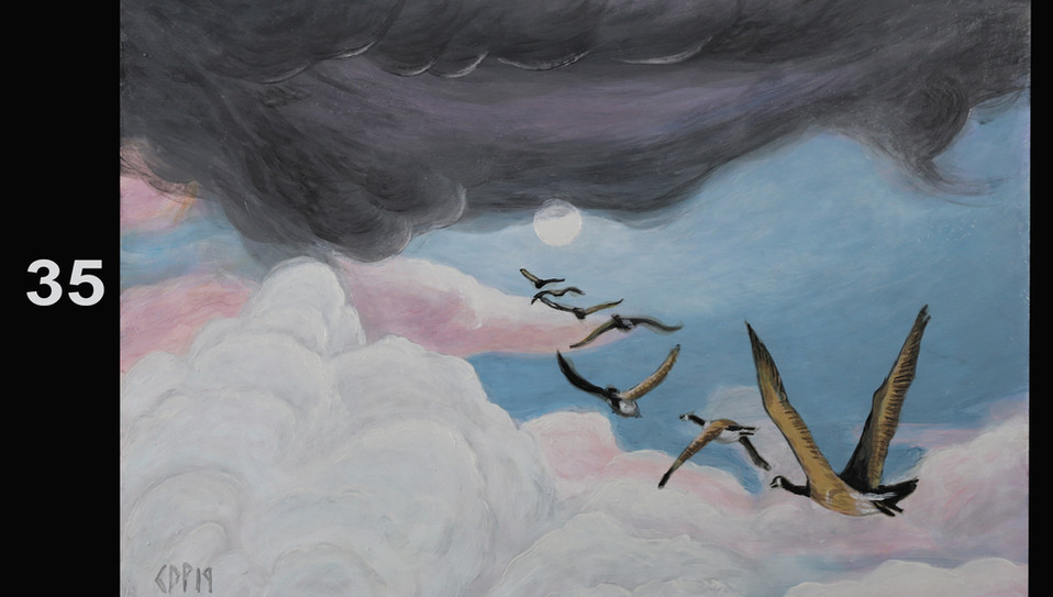 35. Geese and Clouds