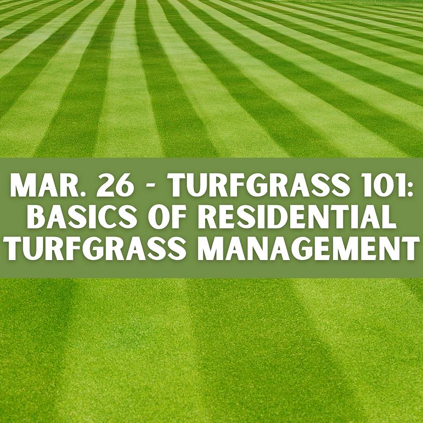 Turfgrass 101: Residential Turfgrass Management - Ag & Stewardship Workshop