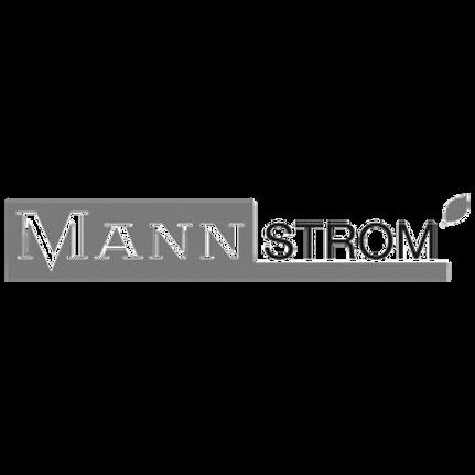mannstrom.png