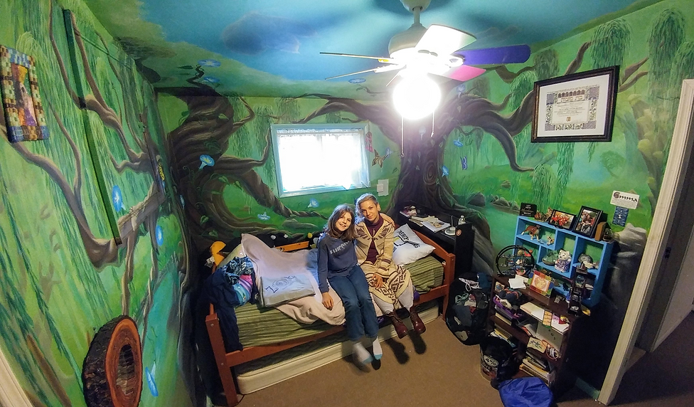 custom mural, kid's mural, comissioned art, Mural Dreams by Laura C. Bray