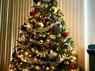 PhoRaya Christmas Tree